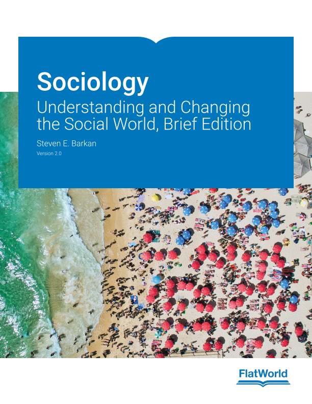 Cover of Sociology: Understanding and Changing the Social World, Brief Edition v2.0
