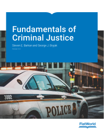 Fundamentals of Criminal Justice