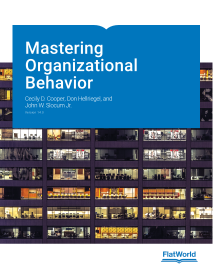 Mastering Organizational Behavior