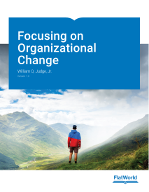 Focusing on Organizational Change