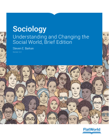 Sociology: Understanding and Changing the Social World, Brief Edition